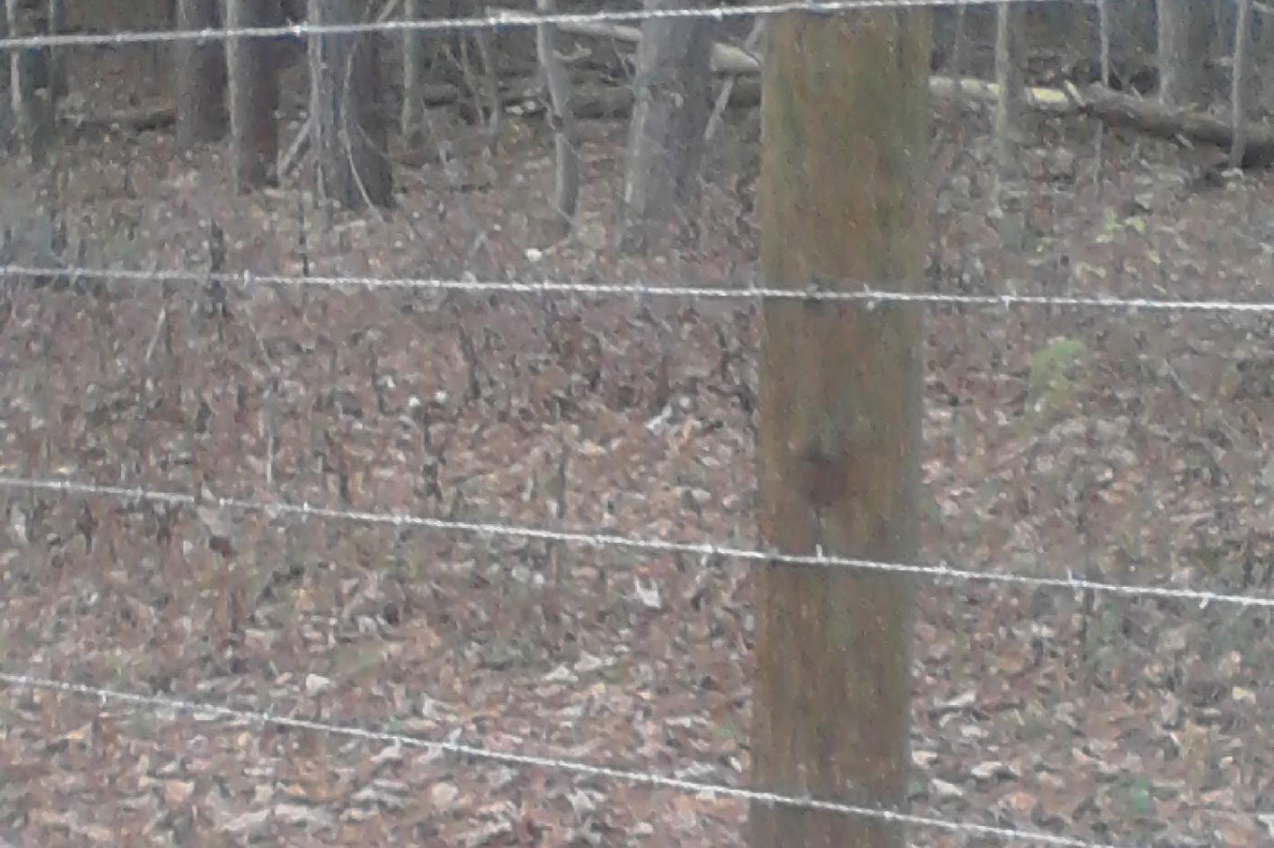 Strauss Fence Company - New Concord, Ohio - Installation ...