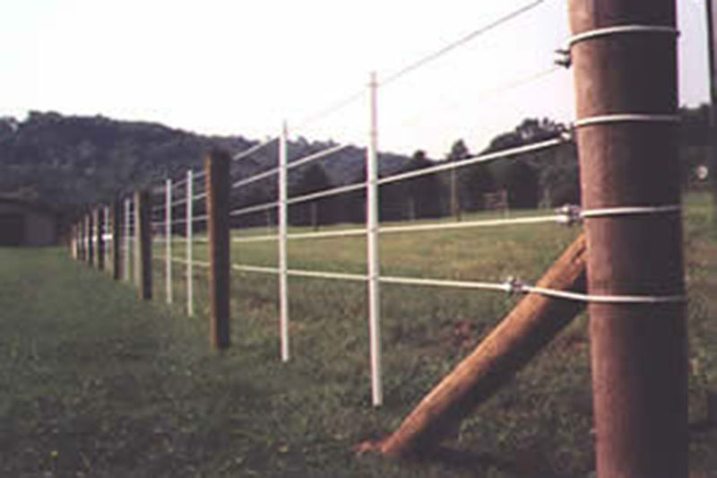 Great Vinyl Coated Wire Fencing Images Electrical