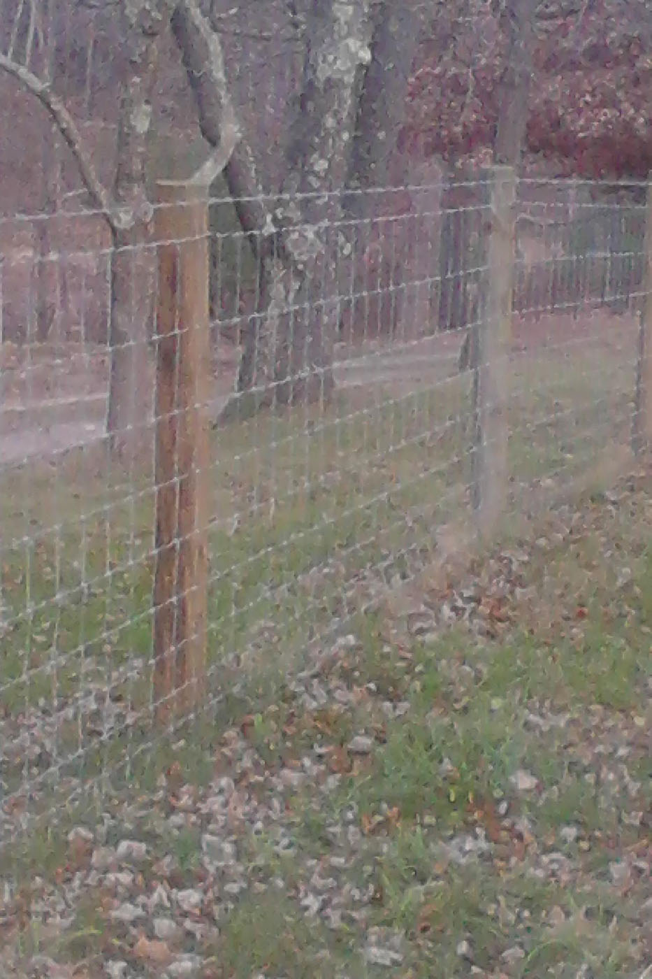 Strauss Fence Company New Concord Ohio Woven Wire Fence